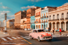 Old american car and  colorful buildings in Havana (ivetthe1) Tags: cuba habana havana america american antique architecture attraction automobile building car caribbean city classic classical color colorful cuban culture destination downtown famous heritage historic history holiday house icon iconic landmark old oldhavana oldtimer pink retro scene street tourism tourist traditional transport transportation travel tropic tropical typical urban vacation vehicle vintage