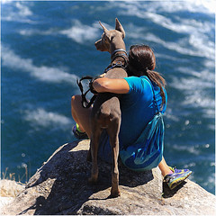 LOVE 💕💕 (Fr@ηk ) Tags: sea dog girl woman love mood atmosphere square format frnk mrtungsten62 spain españa travel caminodesantiago capfinisterra cabofisterre themostwesternpartofspain vacation water adventure recreation rock person beach ocean mountain horse shoe sitting sport leisure human outdoor leisureactivities actionenergy happy clothing summer man goats standing outdoors fawn shorts fun surfing animal stockphotography mammal two holding rocky one photography blue goat footwear lifestyle body back pet young canine grain analoglook waves world100f ƒr㋡ηk internationalhugyourdogday hydd
