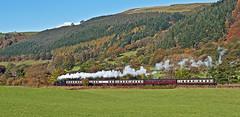 steam trail (midcheshireman) Tags: steam train locomotive llangollenrailway llangollen greatwestern 51xx wales landscape autumn