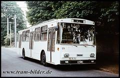 974-1990-06-03-1-Stephonsonstraße (steffenhege) Tags: potsdam vip obus oberleitungsbus trolleybus skoda 14tr 974