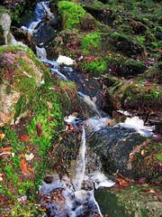 Helvetinjärvi Nationalpark (PeepeT) Tags: helvetinjärvinationalpark helvetinjärvenkansallispuisto suomenluonto luontokuvaus naturephotography finnishnature syksy autumn stream puro