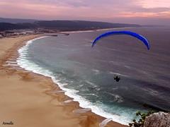 L ' oiseau bleu (Armelle85) Tags: extérieur paysage nature mer océan plage sable parapentiste nazaré portugal ciel coucherdesoleil
