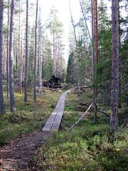 Helvetinjärvi Nationalpark (PeepeT) Tags: helvetinjärvinationalpark helvetinjärvenkansallispuisto suomenluonto luontokuvaus naturephotography finnishnature syksy autumn