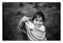 (bakmak71) Tags: minoltax300 schwarzwald blackforest sommer summer pilzesammeln steinpilze agfaapx100 scanvomnegativ adonal swfilm analog
