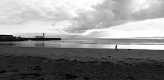 South Bay (phil da greek) Tags: uk beach blackwhite scarborough northyorkshire castle northbay southbay