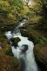 Yukawa river at Shakunage bridge, Oku-Nikko in Tochigi prefecture (yasushiinanaga) Tags: landscape earlyautumn longexposure water leaves rocks japanimage morninglight stream canoneos6d ef2470mmf4lisusm 24mm