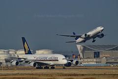 "Singapore Airlines 9V-SKR Airbus A380-841 cn/082 & ""Good Day, USA"" Lufthansa Cargo D-ALFA Boeing 777-FBT cn/41674-1144 @ EDDF / FRA 08-10-2018 (Nabil Molinari Photography) Tags: singapore airlines 9vskr airbus a380841 cn82 eddf fra 08102018 cn082 gooddayusa lufthansa cargo dalfa boeing 777fbt cn416741144"