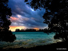 A Cloudy sunset  - Nikon DSCN4248-001 (iezalel7williams) Tags: cloudy clouds photo naturalplace beautiful photography sea nice nikoncoolpixp900 trees seascape landscape blue green black yellow pink orange brown pinetrees silhouette scenary seawater sky planetearth view high light love energy vibration thinkpositive thankyou travel holidays newcaledonia isleofpines dramaticmood