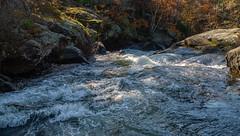 2_DSC9221 (doug.metcalfe1) Tags: 2019 dougmetcalfe fall georgianbay mccraelakewaterfalls nature ontario outdoor