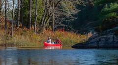 1_DSC9217 (doug.metcalfe1) Tags: 2019 dougmetcalfe fall georgianbay mcdonaldlake nature ontario outdoor canoe kayaking