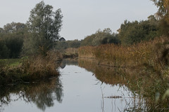 Lode-3953 (WendyCoops224) Tags: 100400mml 80d autumn canon eos ©wendycooper wicken lode reflections