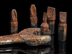 Crazy Tuesday  Rost / Rust (J.Weyerhäuser) Tags: crazytuesday macro rost wednesday rust