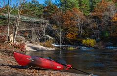 28_DSC9368 (doug.metcalfe1) Tags: 2019 dougmetcalfe fall georgianbay mccraelakewaterfalls nature ontario outdoor fallcolours fallleaves kayak