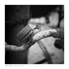 The forgotten bicycle. La bici olvidada. (ithyrsus) Tags: nikon nikond5200 d5200 affinityphoto bw blackwhite bnw blancoynegro blackandwhite biancoenero schwarzweis denmark europa europe dinamarca bike bicicleta