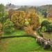 Arundel Castle - Autumn Colours