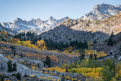 Popping colors buried in shadows (ScorpioOnSUP) Tags: aspendell bishop california canonlens easternsierra jawbonecanyon sierranevada sonya9 sonyalpha adventure aspens autumncolors fallcolors fallfoliage landscape landscapephotography longexposure mountains nature outdoors reflections seekingsolitude solitude tranquility