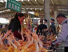 Imploring Chicken Feet (Wolfgang Bazer) Tags: chicken feet hühner hühnerfüse poultry geflügel poulterers muslim moslemische geflügelhändler market markt kunming yunnan china