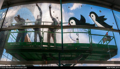 penguin on windows (eraneran70) Tags: eran bendheim penguin wtc brookfeild work workers street washing cleaning glass wall urban people canon eos1 mark3 tamron 1530mm panorama