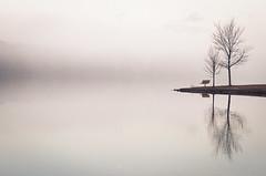 Morning Stop on Way to Work (Thru My Shutter) Tags: fog lake atmospheric moody bench serene contemplation monochromatic minimalist white highkey