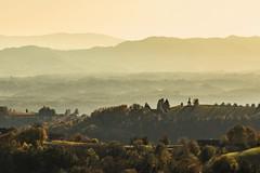 Austria/ Styria - Sausal (cmfritz) Tags: green landscape austria österreich hill grün landschaft steiermark styria hügel sausal hügellandschaft weinberg gegenlicht dunst
