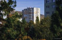 Fall - Block of flats (gergely.t.springer) Tags: budapest budaörs hungary magyarország nikon d3500 apartment blockofflats flats blocks mood city sight fall autumn