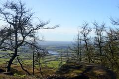 Tittesworth Reservoir (philept1) Tags: outdoors autumn peakdistrict staffordshire leek countryside view bridge nationalpark moorland tittesworth roaches trees