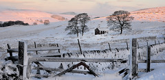 The barn (PentlandPirate of the North) Tags: wildboarclough barn cheshire peakdistrict landscape snow