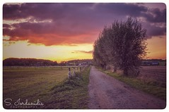 Autumn Sunset (Stathis Iordanidis) Tags: dramaticsunset dramaticclouds sundown trees path fence farm farmland fields countryside nature autumn schaephuysenrheurdt