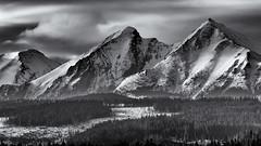 Mountains B&W_ (kckelleher11) Tags: 2019 40150mm em5 march olympus poland bw black f28 mzuiko mountains omd tatra trip white