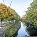 A WALK ALONG THE GRAND CANAL OCTOBER 2019 [BETWEEN BAGGOT STREET AND LEESON STREET]-157873