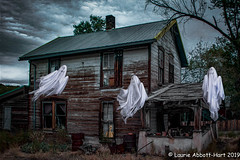 "Haunted (Laurie2123) Tags: 52weeksof2019 halloween laurieabbottturner laurieabbotthartphotography laurietakespics madrid newmexico nikond800e odc odc2019 ourdailychallenge cat composite ghosts laurie2123 skelton spooky textures ""week 33 week33 hss"