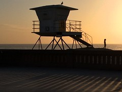 The 5:32 Amber (Rand Luv'n Life) Tags: odc our daily challenge 532 pm outdoor mission beach boardwalk san diego california amber sunset horizon silhouettes repeating shadow light lifeguard tower seagull child