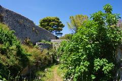 1125 Sicile Juillet 2019 - Palazzolo Acreide, Tempio di Afrodite, Temple d'Aphrodite (paspog) Tags: palazzoloacreide tempiodiafrodite templedaphrodite sicile sicily sicilia juli july juillet 2019