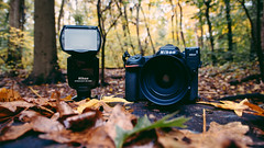 🍂📷🍂 (0sire) Tags: fall autumn leaves camera portrait dslr nikon d500 sb5000af tree bark