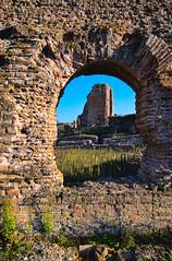 Domus #10 (Il Condor) Tags: roman house villadeiquintili rome italy lazio latini ruin exhibition history empire