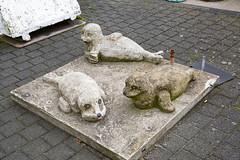 Malerische Robbenbänke (Rasande Tyskar) Tags: cuxhaven germany north sea nordsee street streetview seals robben robbenbänke natur robbe beton