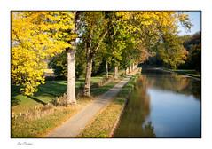 L'automne (Rémi Marchand) Tags: automne paysage landscape canal canaldebourgogne chemin reflet halage chemindehalage canoneos5dmarkiii côtedor arbres feuillage