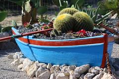 Atlantis Cactus Park (hans pohl) Tags: portugal zambujal sesimbra boats bateaux plantes plants nature cactus