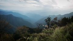 Mt. Odaigahara (Andrew Allan Jpn) Tags: mountain hiking ricohgr japan pentaxart
