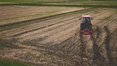 rice fields (Sat Sue) Tags: olympus micro four thirds m43 penf japan fukuoka tractor
