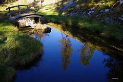 Tenui riflessi autunnali (stefano.chiarato) Tags: reflections riflessi acqua water autunno autumn stagno pond ponte cielo sky azzurro pentax pentaxk70 pentaxlife pentaxflickraward valantrona piemonte italy