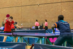1P0A3960 (Chris Rayner Table Tennis Photography) Tags: stockton junior 4 table tennis tournament tees active thornaby pavillion ping pong england tte sports sport photography chris rayner photogrpahy butterfly