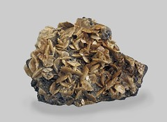 Siderite with Sphalerite and Pyrite (Ron Wolf) Tags: earthscience geology gilman mineralogy pyrite rwpc siderite sphalerite crystal hexagonal macro mineral nature ore colorado