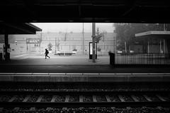 early bird (gato-gato-gato) Tags: apsc fuji fujifilmx100f x100f autofocus flickr fog gatogatogato pocketcam pointandshoot wwwgatogatogatoch zürich kantonzürich schweiz black white schwarz weiss bw monochrom monochrome blanc noir streetphotography street strasse strase onthestreets streettogs streetpic streetphotographer mensch person human pedestrian fussgänger fusgänger passant switzerland suisse svizzera sviss zwitserland isviçre zuerich zurich zurigo zueri fujifilm fujix x100 x100p digital
