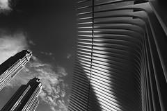 World Trade Center (erichudson78) Tags: usa nyc newyorkcity manhattan worldtradecenter building architecture bw nb noiretblanc blackandwhite canonef24105mmf4lisusm canoneos6d