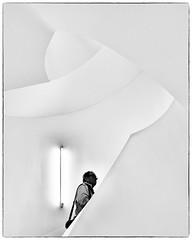 A staircase like a sculpture (bhs-photo) Tags: bnw monochrome schwarzweis noiretblanc staircase minimal leica leicaq leitzpark leicaheadquarter wetzlar