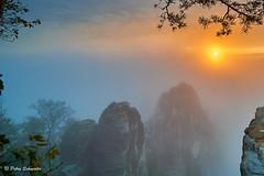 Foggy morning (Petra Schneider photography) Tags: elbsandsteingebirge elbesandstonemoutains fog mist sunrise saxony sachsen sächsischeschweiz saxonswitzerland foggy autumn autumnmood herbst morgennebel nebel