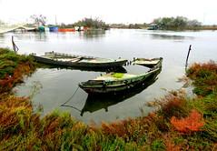 IMG_0004x (gzammarchi) Tags: italia paesaggio natura ravenna portocorsini piallassabaiona piallassa lago barca coppia