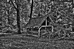 0344 abandoned shed (leike49) Tags: trees barns sheds bw black white sw schwarz weiss noireblanc monochrome amateurphotography nikon d5300