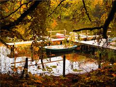 Autumn mood at Lake Uklei (Ostseetroll) Tags: deu deutschland geo:lat=5418232016 geo:lon=1062933246 geotagged schleswigholstein sielbeck ukleisee herbst autumn boote boats spiegelungen reflections olympus em5markii